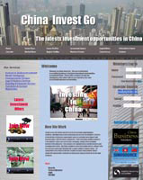 China Investment website